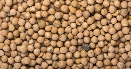 Dried white chickpeas ceci on sack. Top view
