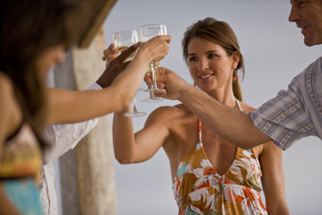 Smiling young woman holding up a glass of white wine during a toast with friends.