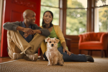 Couple sitting in their living room with pet dog.