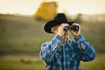 Farmer looking through binoculars on a paddock.
