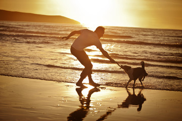 Mature man playing tug-of-war with his dog on a remote beach at sunset.