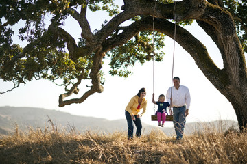 Parents pushing their young daughter on swing.