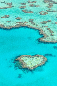 Heart Reef, Great Barrier Reef, one of the UNESCO world heritage sites, Australia