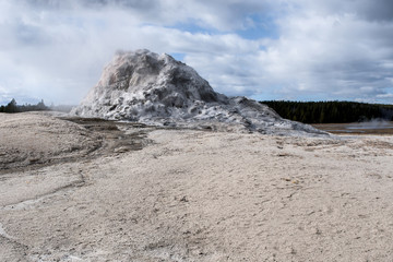 ant hill guyser at yellowstone