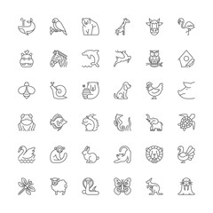 Line icons. Animals