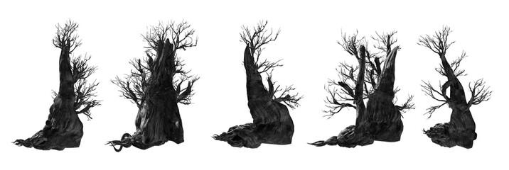 Fototapete - Dead tree isolated Set on white background