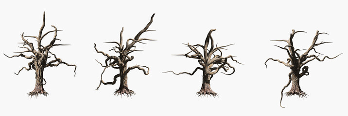 Single old and dead tree isolated on white background