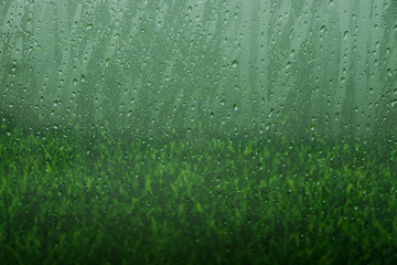 Glass Window with Water Droplet from Rain and Blurred Green Grass as background