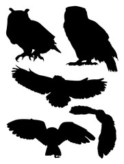 Owls birds silhouette. Good use for symbol, logo, mascot, web icon, sign, or any design you want.