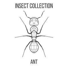 Ant insect geometric lines silhouette isolated on white background vintage vector design element illustration