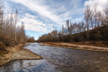 Río Órbigo y vegetación de ribera.
