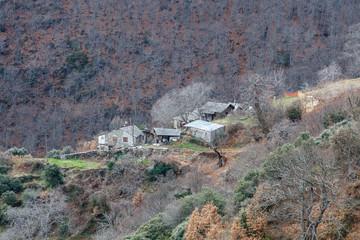Pueblo de Montes de Valdueza, castaños y bosque de robles. El Bierzo, León, España.