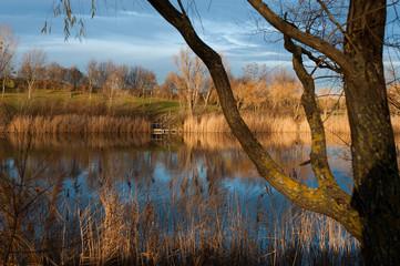 Teich im Winterlicht