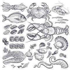 Seafood vector set.
