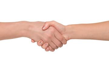 Handshakings isolated on white background