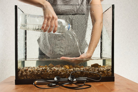 aquarist pouring water in aquarium