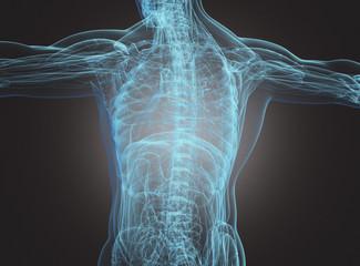 Corpo umano con radiografia spina dorsale e scheletro