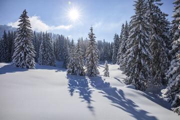 Vorarlberg_Winter_0146