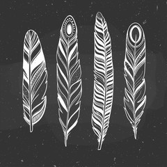 natural boho set with feathers, crystals and arrow hand drawn on a chalkboard, vector illustration