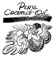 Pure coconut oil. Hand drawn graphic illustration. Sketchy style.