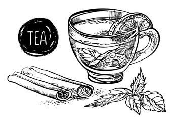 Tea with lemon, mint and cinnamon. Vector hand drawn graphic illustration.