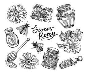 Hand drawn honey set. Vector graphic illustrations.