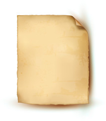Empty realistic sheet of parchment paper. Vector illustration.