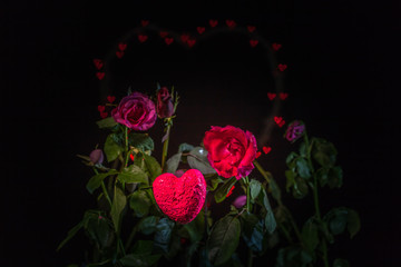 Foto op Canvas Poppy rose flowers in front of heart shape background with hundred of hearts bokeh in the black background of valentine day