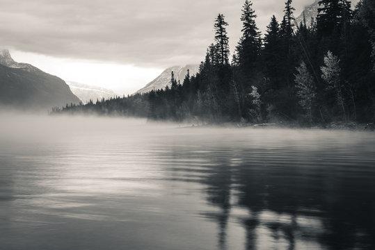 Foggy forest lake