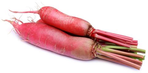 Closeup of red radish