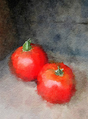 Watercolor Illustration 01