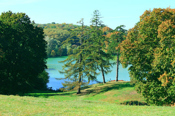 lake with blue water in the forest