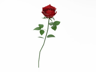 3D illustration red rose