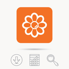 Flower icon. Florist plant with petals symbol. Report chart, download and magnifier search signs. Orange square button with web icon. Vector