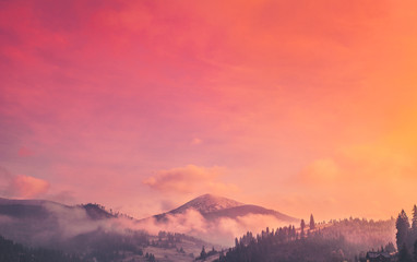 Majestic foggy forest and mountain peak. Dramatic and picturesque sunrise pink orange sky. Carpathians, Ukraine, Europe. Beauty worldmountain landscape. Exploring beauty world. Travel background.