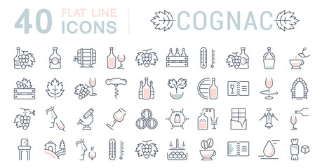 Set Vector Flat Line Icons Cognac
