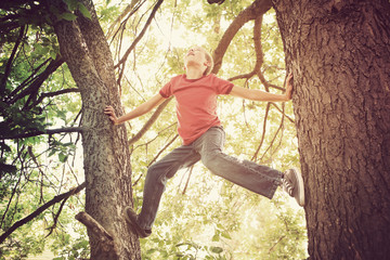 Happy boy climbing a tree.  Instagram effect.
