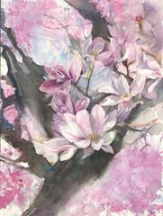 Magnolia blooming tree flower watercolor painting handmade