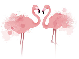 Vector illustration of couple pink flamingos with watercolor splatter and splash