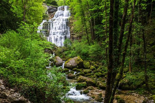 Paysage cascades et forêt