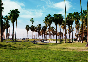 Venice Beach, Los Angeles, California