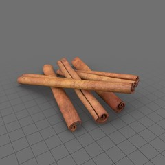 Cinnamon Sticks 01