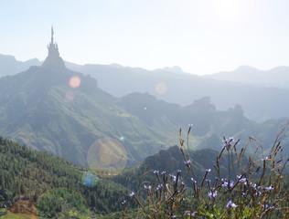 fairytale castle in mountains