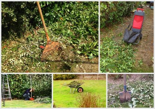Composition entretien du jardin pelouse et arbres for Entretien jardin 72