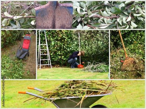 Composition entretien du jardin pelouse et arbres for Entretien jardin 27