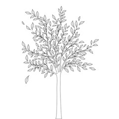 Tree with leaves outline on white background vector