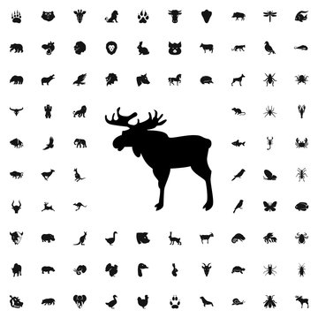 moose icon illustration