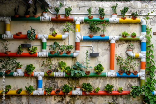 Fototapete Urban Gardening - colorful pipes filled with vegetables