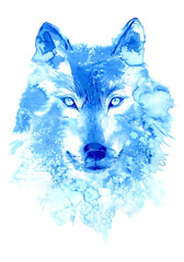 Wolf. image of a wild animal. Watercolor hand drawn illustration.