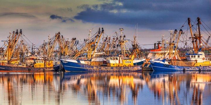 Fishing ships during majestic sunset